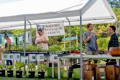 Lā 'Ulu - MNBG native plant sale