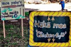 Lā 'Ulu - Makahiki games activity
